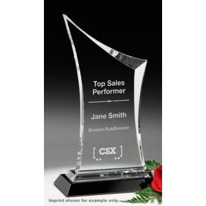 Coburn Award